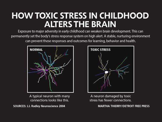 Exposure To Toxic Stress In Childhood >> Understanding Childhood Stress Legase Spiritual Enlightenment