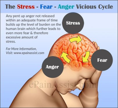 the-stress-fear-anger-vicious-cycle-preview